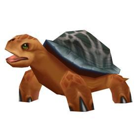 Черепаха ярмарки новолуния
