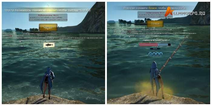 Рыбалка в БДО. Лучшие места, заработок, имперская рыбалка, одежда
