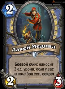 medivhs-valet[1]