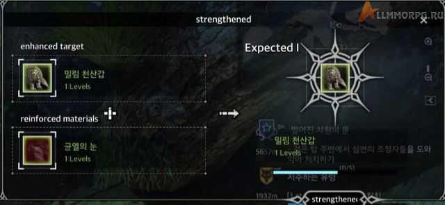 pet_strengthen1