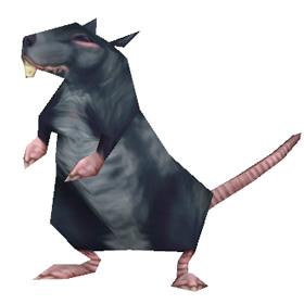 Гигантская сточная крыса
