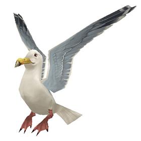 Растбергская чайка