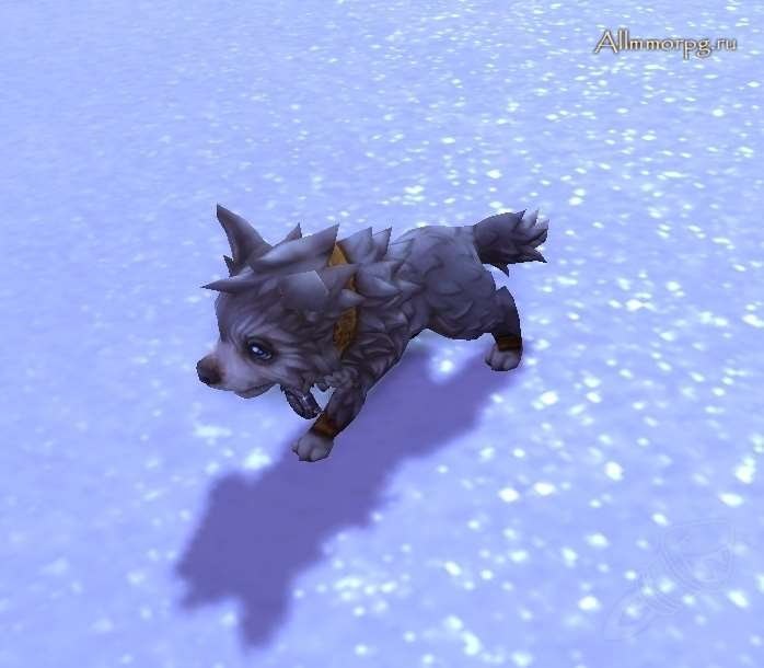 Северный волчонок